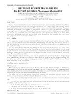 BÁO CÁO NGHIÊN CỨU KHOA HỌC KỸ THUẬT: MỘT SỐ ĐẶC ĐIỂM HÌNH THÁI VÀ SINH HỌC CỦA RỆP SÁP GIẢ CACAO Planococcus lilacinus Ckll. pot