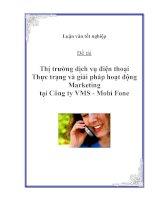 """Luận văn: """"Thị trường dịch vụ điện thoại - Thực trạng và giải pháp hoạt động Marketing tại Công ty VMS - Mobi Fone"""" potx"""