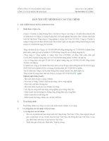 công ty cp xi măng vicem hoàng mai báo cáo tài chính 31 tháng 12 năm 2010