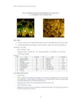 Giáo trình thực tập công nghệ chế biến rau quả - Bài 4 doc