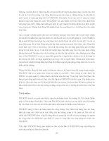 TỰ DO HÓA THỊ TRƯỜNG CHỨNG KHOÁN VIỆT NAM - CÁC VẤN ĐỀ CHỦ YẾU ĐỐI VỚI CƠ QUAN QUẢN LÝ NHÀ NƯỚC VỀ CHỨNG KHOÁN VÀ CÁC CÔNG TY CHỨNG KHOÁN TRONG NƯỚC - Phần 6 pps