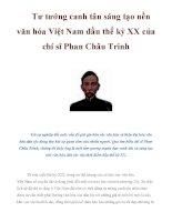 Tư tưởng canh tân sáng tạo nền văn hóa Việt Nam đầu thế kỷ XX của chí sĩ Phan Châu Trinh pptx
