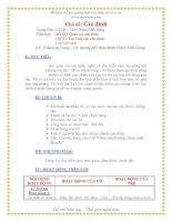 Giáo án mầm non chương trình đổi mới: Chủ đề: Gia đình potx