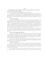 BÀI GIẢNG CÂY ĐẶC SẢN VÙNG - Bài 3 SINH TRƯỞNG PHÁT TRIỂN VÀ YÊU CẦU SINH THÁI CỦA CÂY TIÊU pot