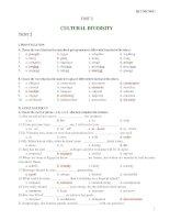 UNIT 2 - CULTURAL DIVERSITY TEST 2 docx