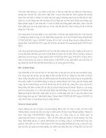 TỰ DO HÓA THỊ TRƯỜNG CHỨNG KHOÁN VIỆT NAM - CÁC VẤN ĐỀ CHỦ YẾU ĐỐI VỚI CƠ QUAN QUẢN LÝ NHÀ NƯỚC VỀ CHỨNG KHOÁN VÀ CÁC CÔNG TY CHỨNG KHOÁN TRONG NƯỚC - Phần 9 pdf