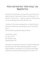 """Phân tích bài thơ """"Ánh trăng"""" của Nguyễn Duy pptx"""