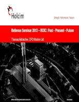 holcim strength performance passion bellevue seminar 2013 roic past present future thomas aebischer cfo holcim ltd