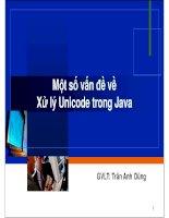 Một số vấn đề về xử lý Unicode trong Java pptx