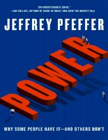 Jeffrey pfeffer   power  why some people have it nt