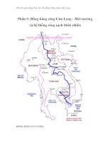 Thử tìm giải pháp thủy lợi cho đồng bằng sông Cửu Long - Phần 5: Đồng bằng sông Cửu Long - Môi trường và hệ thống sông rạch thiên nhiên docx