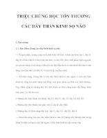 TRIỆU CHỨNG HỌC TỔN THƯƠNG CÁC DÂY THẦN KINH SỌ NÃO pot
