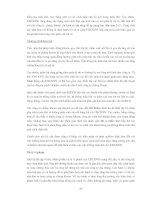 TỰ DO HÓA THỊ TRƯỜNG CHỨNG KHOÁN VIỆT NAM - CÁC VẤN ĐỀ CHỦ YẾU ĐỐI VỚI CƠ QUAN QUẢN LÝ NHÀ NƯỚC VỀ CHỨNG KHOÁN VÀ CÁC CÔNG TY CHỨNG KHOÁN TRONG NƯỚC - Phần 8 ppsx