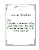 """Báo cáo tốt nghiệp: """"Giải pháp phát triển hệ thống phân phối liên kết dọc nhóm hàng điện tử điện lạnh tại thị trường Việt Nam"""" doc"""