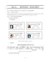 GIÁO TRÌNH LẬP TRÌNH QUẢN LÝ VỚI MICROSOFT OFFIC ACCESS - BÀI 6 REPORT – BÁO BIỂU pptx