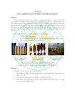 Giáo trình- Sinh thái học đồng ruộng -chương 3 pptx