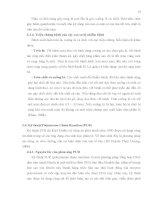 Luận văn : PHÂN TÍCH ĐA DẠNG DI TRUYỀN MỘT SỐ MẪU NẤM Corynespora cassiicola (Berk. & Curt.) Wei GÂY BỆNH TRÊN CÂY CAO SU (Hevea brasiliensis Muell. Arg.) BẰNG PHƯƠNG PHÁP RFLP – PCR part 3 potx