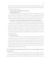 Luận văn : PHÂN TÍCH ĐA DẠNG DI TRUYỀN MỘT SỐ MẪU NẤM Corynespora cassiicola (Berk. & Curt.) Wei GÂY BỆNH TRÊN CÂY CAO SU (Hevea brasiliensis Muell. Arg.) BẰNG PHƯƠNG PHÁP RFLP – PCR part 4 potx