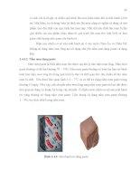 Luận văn : NGHIÊN CỨU QUY TRÌNH SẢN XUẤT MEN BÁNH MÌ KHÔ BẰNG PHƯƠNG PHÁP SẤY THĂNG HOA part 5 potx
