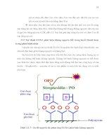 Luận văn : Thu thập dịch tiết từ Fasciola gigantica và sử dụng làm kháng nguyên trong chẩn đoán part 4 pdf