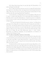 Luận văn : ĐỊNH DANH NẤM Phytophthora spp. BẰNG CÁC KỸ THUẬT SINH HỌC PHÂN TỬ part 2 ppt