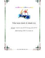 Tiểu luận KTCT: Vai trò của KTNN trong nền KTTT định hướng XHCN ở nước ta doc