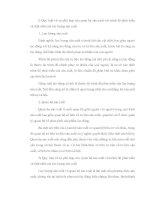 Tiểu luận KTCT: Quy luật về sự phù hợp của QHSX với tính chất và trình độ phát triển của LLSX doc