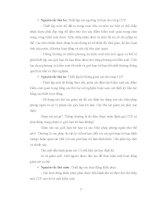 Luận văn : KHẢO SÁT QUY TRÌNH SẢN XUẤT ĐỒ HỘP KHÓM RẼ QUẠT VÀ BƯỚC ĐẦU THIẾT LẬP HACCP CHO QUY TRÌNH part 3 ppsx