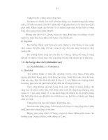 Luận văn : Nghiên cứu đặc điểm sinh học của côn trùng thuộc Bộ Cánh cứng hại lá keo và những phương pháp phòng trừ chúng tại huyện Phú Lương tỉnh Thái Nguyên part 9 ppt