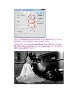 Giáo trình Photoshop: Hiệu Ứng Khác Nhau của Màu Sắc phần 2 pptx