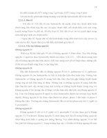 Luận văn : KHẢO SÁT THÀNH PHẦN HÓA HỌC VÀ KHẢ NĂNG KHÁNG MỘT SỐ CHỦNG VI SINH VẬT ĐƯỜNG RUỘT CỦA CÂY XUÂN HOA (Pseuderanthemum palatiferum) part 4 pdf