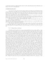 Bài giảng : Các chất phụ gia dùng trong sản xuất thực phẩm part 3 docx