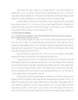 Luận văn : XỬ LÝ PHỤ PHẾ PHẨM TỪ TÔM BẰNG PHƯƠNG PHÁP VI SINH part 7 potx