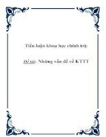 Tiểu luận khoa học chính trị: Những vấn đề về KTTT pptx