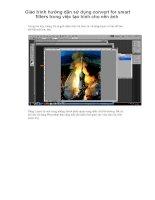 Giáo trình hướng dẫn sử dụng convert for smart filters trong việc tạo hình cho nền ảnh p1 potx