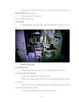 Luận văn : KHẢO SÁT QUY TRÌNH SẢN XUẤT ĐỒ HỘP KHÓM RẼ QUẠT VÀ BƯỚC ĐẦU THIẾT LẬP HACCP CHO QUY TRÌNH part 6 docx