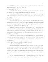 Luận văn : NGHIÊN CỨU KHẢ NĂNG GÂY BỆNH CHO CHUỘT Ở CÁC CHỦNG SALMONELLA CÓ NGUỒN GỐC TỪ BỆNH PHẨM, THỰC PHẨM part 2 docx