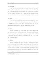 Luận văn tốt nghiệp : Điều tra hiện trạng bệnh Tristeza, bệnh vàng lá Greening và bệnh vàng lá thối rễ trên cây có múi ở Đồng Bằng Sơng Cửu Long part 2 pot