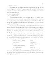 Luận văn : Khảo sát các phương pháp chiết xuất, thành phần hoá học và tính chất hoá lý của tinh dầu hoa lài Jasminum sambac L. trồng tại An Phú Đông, quận 12 Tp.HCM part 2 pot