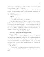Luận văn : ĐỊNH DANH NẤM Trichoderma DỰA VÀO TRÌNH TỰ VÙNG ITS – rDNA VÀ VÙNG TEF part 2 pps