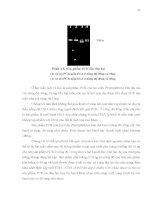 Luận văn : ĐỊNH DANH NẤM Phytophthora spp. BẰNG CÁC KỸ THUẬT SINH HỌC PHÂN TỬ part 3 pps