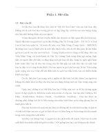 Luận văn : Nghiên cứu kỹ thuật phát sinh phôi soma và tạo hạt nhân tạo ở cây lan Hồ Điệp (Phalaenopsis sp. ) part 1 potx