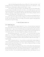 Luận văn : ĐIỀU TRA HIỆN TRẠNG SẢN XUẤT RAU AN TOÀN NĂM 2004 TẠI THÀNH PHỐ LONG XUYÊN TỈNH AN GIANG part 3 potx