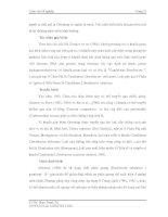 Luận văn tốt nghiệp : Điều tra hiện trạng bệnh Tristeza, bệnh vàng lá Greening và bệnh vàng lá thối rễ trên cây có múi ở Đồng Bằng Sơng Cửu Long part 3 doc