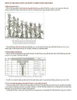 Ôn tập : Sinh học 12 phần 2 ppt