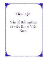 Tiểu luận: Vấn đề thất nghiệp và việc làm ở Việt Nam pps