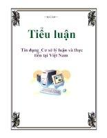 Tiểu luận: Tín dụng_Cơ sở lý luận và thực tiễn tại Việt Nam pptx