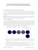 Tư liệu hình thành giáo trình hướng dẫn thao tác với các đối tượng trong chanel path p1 pot