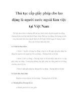 Thủ tục cấp giấy phép cho lao động là người nước ngoài làm việc tại Việt Nam pot