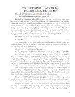 BÀI GIẢNG tổ CHỨC SINH HOẠT CHI bộ